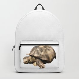Sulcata Tortoise (grazing) Backpack