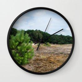 Conifer Tree Veluwe the Netherlands Wall Clock