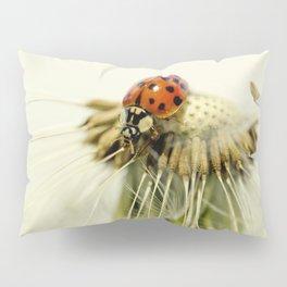 Dandelion Ladybugs Pillow Sham