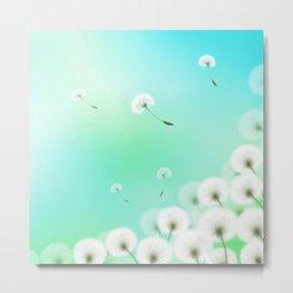 Dandelion Fluffs Metal Print