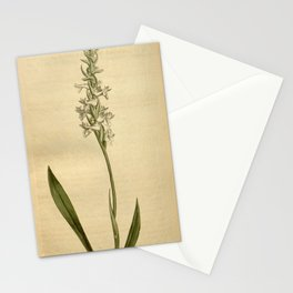 Flower 1568 neottia cernua Nodding flowered Neottia10 Stationery Cards