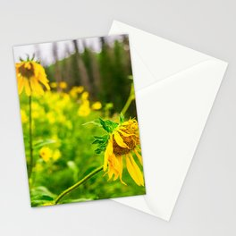 Wildflowers Sunflower Floral Nature Utah Mountains Wasatch Stationery Cards