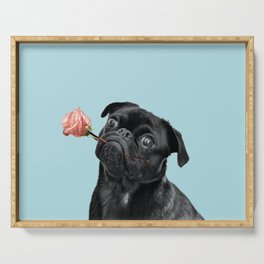 Sweet pug in blue Serving Tray