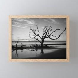 Driftwood Beach Framed Mini Art Print