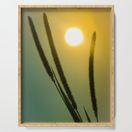 Silhouettes in Sunset Botanical / Nature Photograph Serving Tray