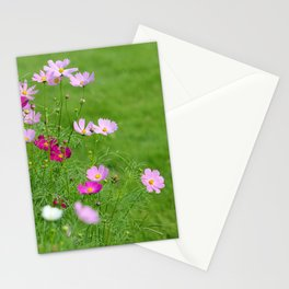 Pink Cosmos Garden in Sunshine Photography Stationery Cards
