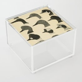 Vintage Duck Heads Acrylic Box
