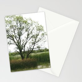 Tree amid reeds Stationery Cards