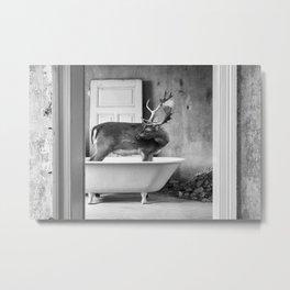 Lost places wildlife Metal Print