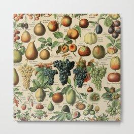 Adolphe Millot- Vintage Fruits Metal Print