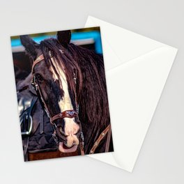 Concept Kaltblutmarkt 2018 : Horse eyes Stationery Cards
