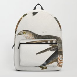 9 The Pigeon Hawk (Falco columbarius) 10 Coopers Hawk (Astur cooperi)  from Zoology of New York (184 Backpack