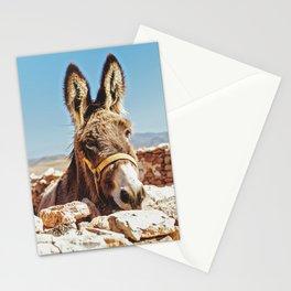 Donkey photo Stationery Cards