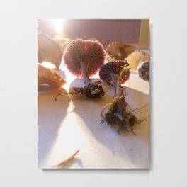 Purple Amethysts  Metal Print