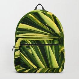 Big, Bright Succulent Close-Up Art Photo Backpack