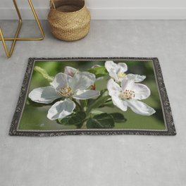 Apple Blossoms Rug