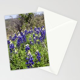 A Bundle of the Blues... Stationery Cards