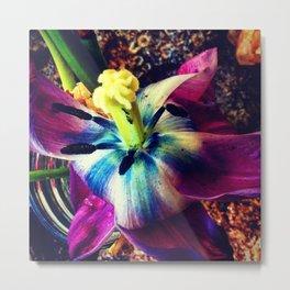 Flower fade Metal Print