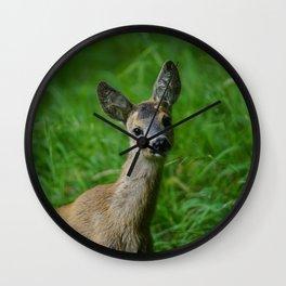 Roe Wild Animal Wall Clock