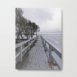 Frozen Finland Metal Print