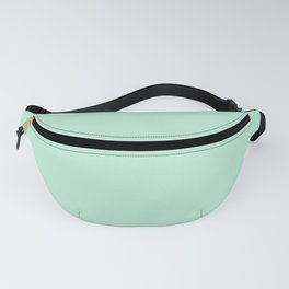 Mint Green Pastel Solid Color Block Spring Summer Fanny Pack