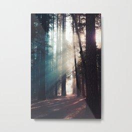 Woodley Forrest 2 Metal Print