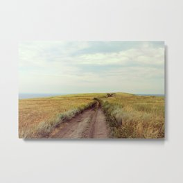 Rustic photo. Country road photography. Summer landscape. Nature poster Metal Print