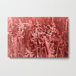 CORAL SOUND of GRASSES Metal Print