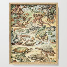 Reptiles II by Adolphe Millot // XL 19th Century Snakes Lizards Alligators Science Textbook Artwork Serving Tray