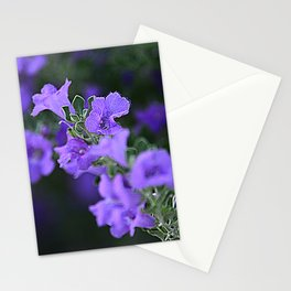 Purple Flowers In Garden Fine Art Photo Stationery Cards