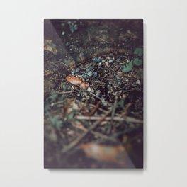 Natures Ingredients Metal Print