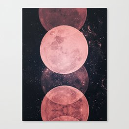 Pink Moon Phases Canvas Print