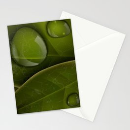 dew drops on green leaves Stationery Cards