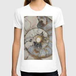 Jurassic Coast ammonite. T-shirt