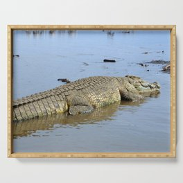 African Nile Crocodile, Wildlife, Ethiopia, Africa Serving Tray