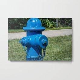 Blue Bonnet Fire Hydrant Fire Plug  Metal Print