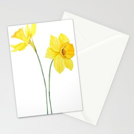 two botanical yellow daffodils watercolor Stationery Cards