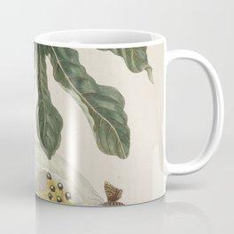 Papaya - Maria Sibylla Merian Coffee Mug