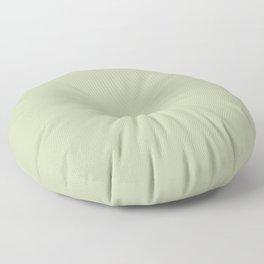 Pratt and Lambert 2019 Mellon Green (Sage Green) 18-28 Solid Color Floor Pillow