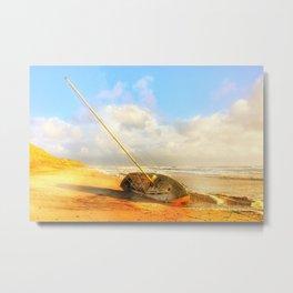Beach and Boat Metal Print
