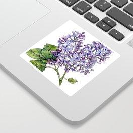 Lilac Watercolor Illustration Sticker