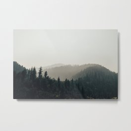 Northern California Forest Metal Print