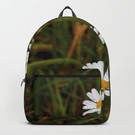 June Daisy 2 Backpack