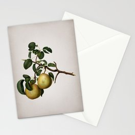 Vintage Pear Botanical on Parchment Stationery Cards
