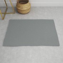Mid Tone Gray Solid Color Pairs with Sherwin Williams Mantra 2020 Forecast colors Software SW7074 Rug