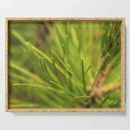 Pine needles Serving Tray