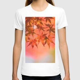 Autumn leaves of Japan T-shirt