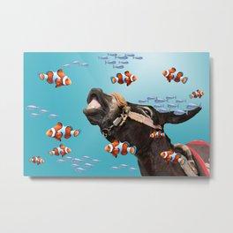 Tropical Clownfish Donkey Underwater Metal Print