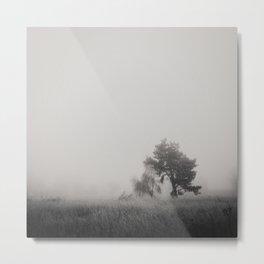 the fog ... Metal Print