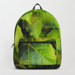 closeup green ivy leaves garden texture background Backpack